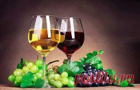 Рецепты приготовления вина в домашних условиях