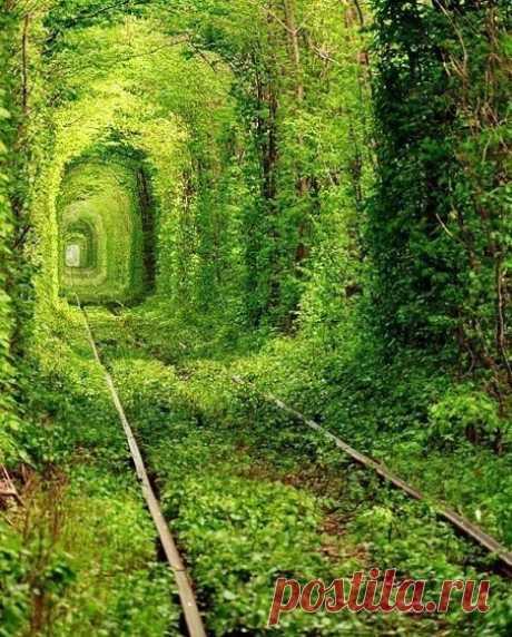Заброшенные железные дороги - Путешествуем вместе