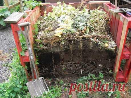 Компост - основа органічного землеробства. Як приготувати, як використовувати. Фото - ЗЕЛЕНА САДИБА