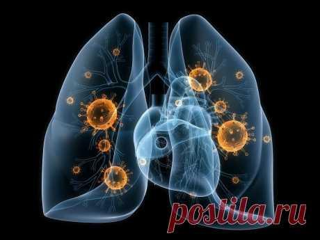 Лечение вирусной пневмонии забытыми средствами. | О России и Мире, обо мне и о вас | Яндекс Дзен