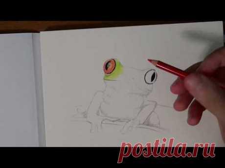 Самые главные техники рисования цветными карандашами