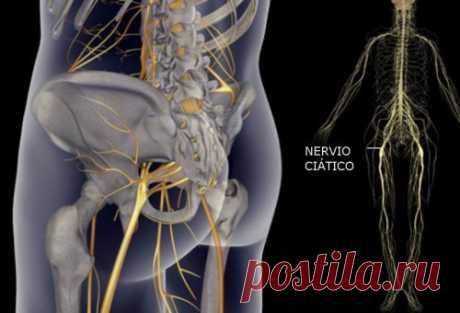 Tratamientos y recomendaciones para aliviar los dolores del nervio ciático - Mejor con Salud