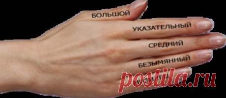 Значение пальцев на руках....  Знание значения пальцев на руке может принести немало пользы. Изучив этот раздел хиромантии, вполне реально не только узнать о будущем и успеть исправить его, но и улучшить качество жизни в настоящем…