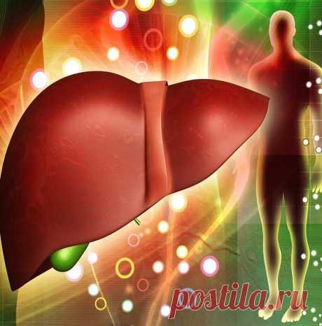 Упражнения для спасения печени Трудно переоценить роль печени в работе организма. Это — фильтр, очищающий кровь и удаляющий токсичные вещества. Неправильный образ жизни (порочное питание, употребление алкоголя, отсутствие двигательной активности) пагубно отражается на функциях печени. Вот упражнения, которые восстанавливают важный орган.