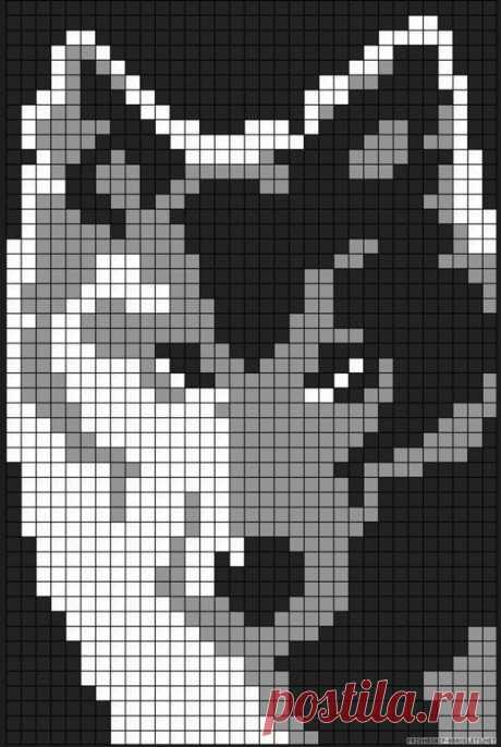 Узор Волк спицами
