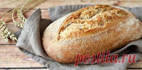 🌸МОЖНО ЛИ ЕСТЬ ХЛЕБ НА НОЧЬ?  Сторонники правильного питания и большинство тренеров твердят в один голос: «кушать хлеб, особенно белый нельзя». Так как в нем практически отсутствуют полезные вещества. Как вы поняли, мнение это ошибочно и ничем не подтверждено. Были проведены исследования по поводу хлеба. И что ми видим?  ПРОДОЛЖЕНИЕ...https://devchenky.ru/mozhno-li-est-hleb-na-noch/