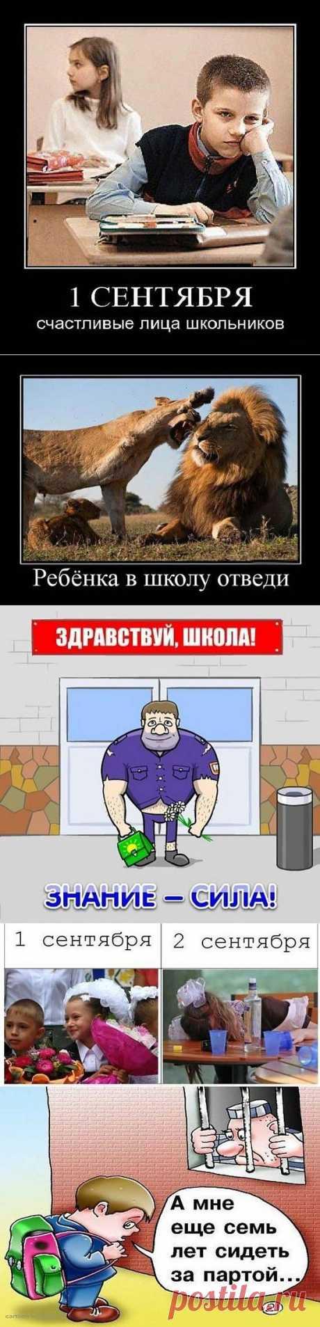 Приколы к первому сентября / Приколы