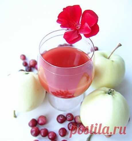 Клюковка – рецепт настойки из клюквы на водке