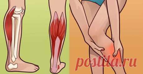 Судороги в ногах: Вот откуда они берутся, и как с этим справиться Судороги вногах случаются внезапно изатрагивают ноги, икры имышцы бедра. Посути это болезненное...