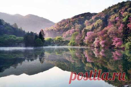 Утреннее озеро, Южная Корея