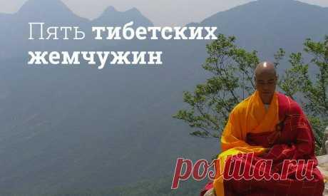 Какие физические упражнения приносят наибольшую пользу здоровью   Мегаптека.ру Практика «Пять тибетских жемчужин» или «Пять тибетцев» появилась в монастырях Тибета. Но чтобы ее выполнять, совсем не обязательно быть монахом и жить в горах.