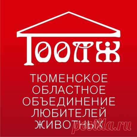 ТООЛЖ.РФ