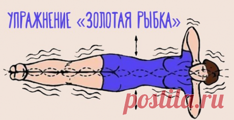 """Я делаю упражнение """"Золотая рыбка"""" каждый день, и забыл про боли в спине и проблемы с пищеварением   Просто о здоровье   Яндекс Дзен"""