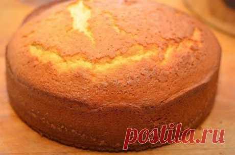 Быстрый бисквит на кефире: пышный, воздушный и легкий! | PASTRY CHEF | Яндекс Дзен