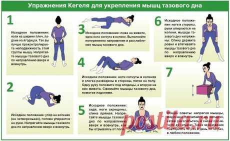 упражнения кегеля для женщин в домашних условиях: 5 тыс изображений найдено в Яндекс.Картинках