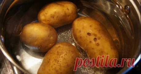 Итальянский картофельный пирог с сыром и ветчиной, который готовят на обычной сковороде | Краше Всех
