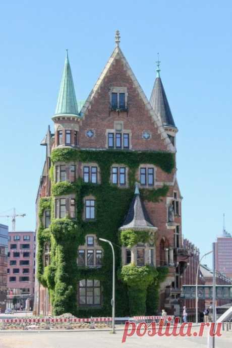 Плющом её укутывал: очаровательные дома со всего мира, уютно покрытые зеленью / Туристический спутник