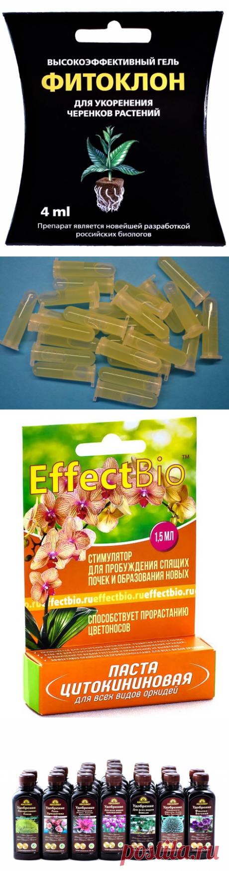 Каталог продукции нашего производства - Производитель «EffectBio» «Effect» «Effect+» «Абсолют»