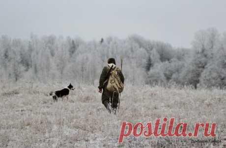 Охотнику открываются красоты природы, которых не замечают люди в обычной жизни.