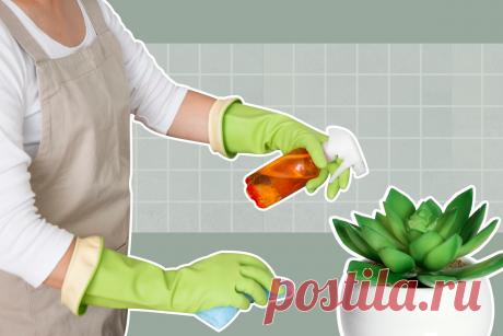 Экспресс-уборка: наводим порядок дома по методичке клининговой компании | Адепт Чистоты | Яндекс Дзен
