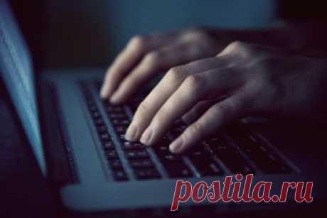 В интернете отмечается рост числа мошенников – Москва 24, 15.01.2019