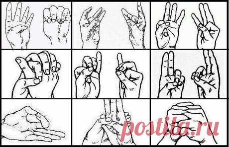 Как использовать удивительную способность пальцев лечить наше тело
