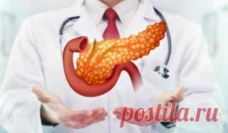 Почему поджелудочной нужно мясо. Как восстановиться после обострения панкреатита.   Чтобы тело не болело   Яндекс Дзен