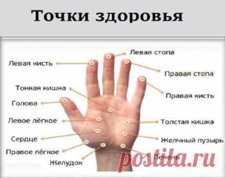 МАССИРУЯ ПАЛЕЦ ПО 1 МИНУТЕ В ДЕНЬ, ПОРАЗИШЬСЯ ТОМУ, ЧТО СЛУЧИТСЯ С ТВОИМ ТЕЛОМ Точки на большом пальце отвечают за сердце и легкие. Учащенное сердцебиение можно постепенно исправить с помощью массажа этого пальца.  Указательный палец  Отвечает за работу ЖКТ. Боли в животе, трудности при пищеварении можно легко преодолеть, массируя указательный палец.  Средний палец  Циркуляция крови — его забота. При тошноте, головокружении или бессонице просто помассируй средний палец.  Безымянный палец