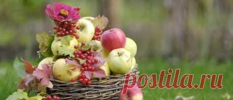 Яблочный Спас в 2020 году: какого числа, дата, традиции и приметы Яблочный Спас в 2020 году: какого числа будет, дата, традиции и приметы. Когда освещать яблоки в церкви. Какие традиции и приметы на яблочный спас.