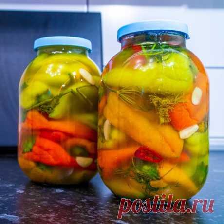 Квашеный болгарский перец без стерилизации и уксуса – пошаговый рецепт с фотографиями