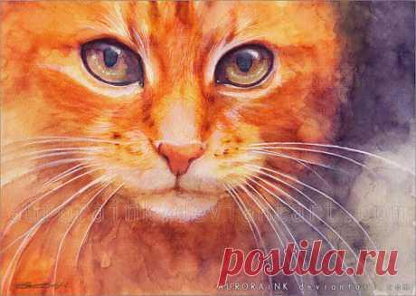 Тёплая живопись от художника Aurora Wienhold - акварельные Котэ