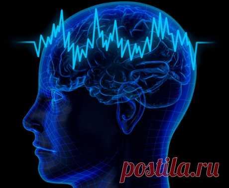 Наш мозг имеет способность изменяться, восстанавливаться и даже излечиваться в любом возрасте   Изучающие головной мозг человека ученые за последние несколько лет обнаружили определенное количество неожиданных аспектов, которые обуславливают влияние мозга на общее состояние здоровья нашего организма...