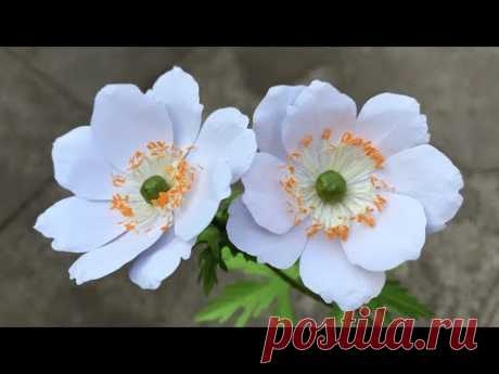 ABC TV | How To Make Anemone Paper Flower - Craft Tutorial