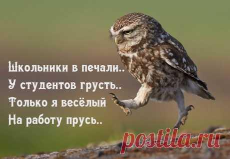 Фото 50839, альбом --- Нота...) - 250 фото | Фотографии Vika Viktori.