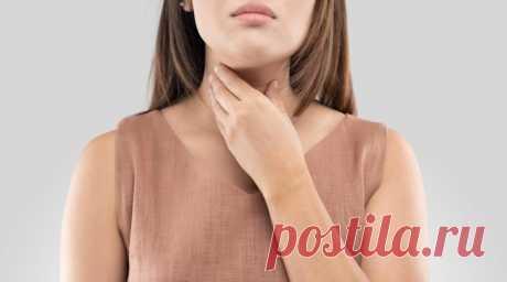 Функции щитовидной железы: популярно о важном | InfoHelth