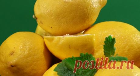 Ешьте лимоны как можно чаще   Мифы и правда о ЗОЖ   Яндекс Дзен