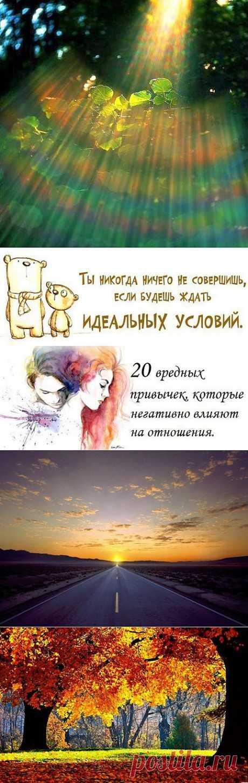 Академия Счастья