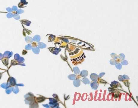 Англичанка создает картины из сухих цветов, и ее работы выставляют в музеях | MIAZAR | Яндекс Дзен