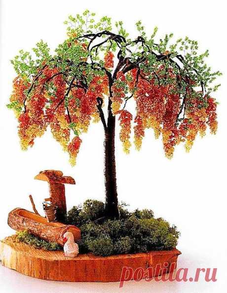 Желтая глициния / Деревья, бонсай / Biserok.org