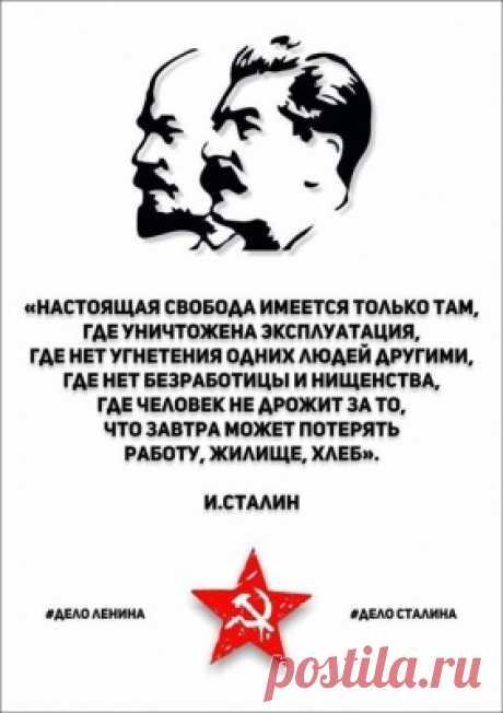 Солженицына: «Патриотизм — это не только гордость за свою страну, но и стыд»