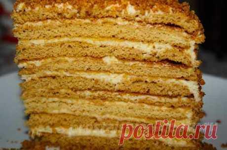 Вкусный торт Медовик со сметанным кремом и шоколадом