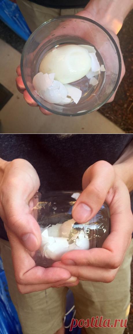 Быстрее некуда: Как почистить варёное яйцо за 5 секунд . Чёрт побери