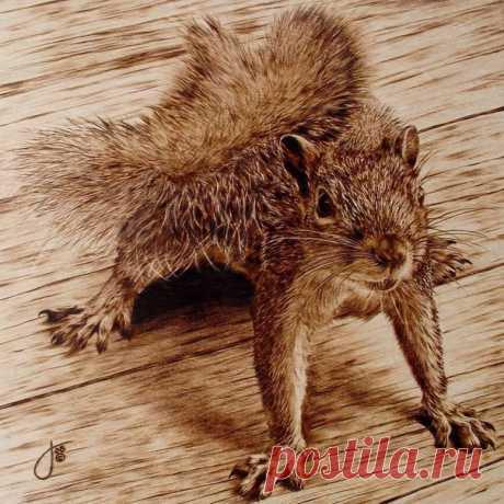 Художник Джули Бендер (Julie Bender) — ярчайший представитель пирографии, искусно владеющий огненной стихией Её уникальные и неповторимые рисунки по дереву выражают глубочайшую признательность живой природе. Джули Бендер при помощи выжигания по дереву удалось передать мельчайшие детали животного мира настолько точно, что едва ли можно удержаться от того, чтобы не утонуть в палитре полутонов и оттенков. Богатство уникального стиля художницы характеризуется микроскопичностью деталей изображения…