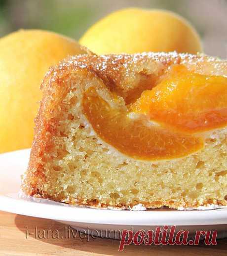 Июльский кекс с абрикосами