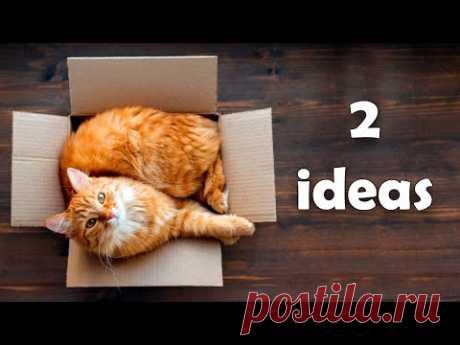2 поделки из картона для вашего кота