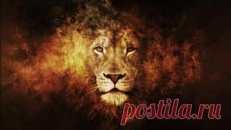 Львы-людоеды полковника Паттерсона | ПроЧтение | Яндекс Дзен