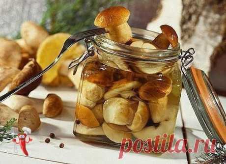 Marinade for any mushrooms.