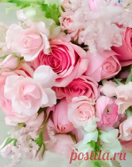 Душа каждого человека нуждается в мечтах, тогда она расцветает, как самый прекрасный цветок, а человек на пути к мечте получает нечто большее, чем просто ее исполнение..