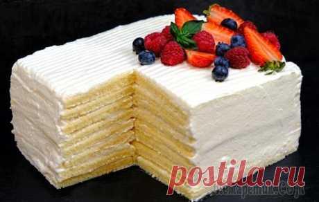 Торт Молочная девочка за 30 минут без раскатки коржей