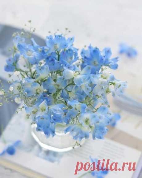 Если голубые небеса наполняют вас радостью.. Если стебель полевой травы не оставляет вас равнодушным.. Если простые картины природы говорят с вами на понятном языке.. Радуйтесь.. Это значит, что ваша душа жива..  Винсент Ван Гог